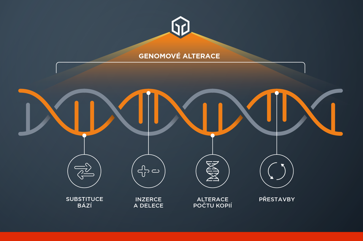All our services use our leading comprehensive genomic profiling approach to identify clinically relevant alterations and potentially expand treatment options